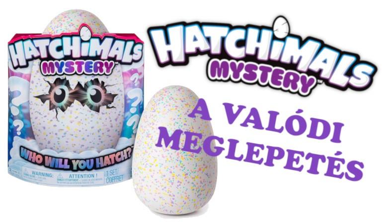 Hatchimals Mystery Felhő-öböl titokzatos tojás 6043737